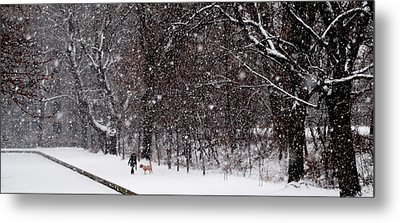 Metal Print featuring the photograph Christmas Walk by Jacqueline M Lewis