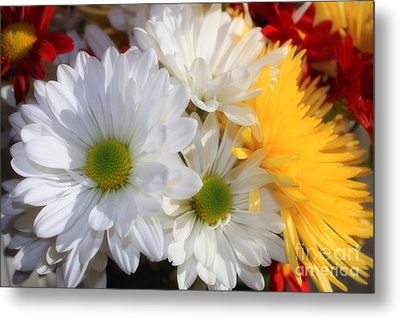 Metal Print featuring the photograph Chrysanthemum Punch by Cathy  Beharriell