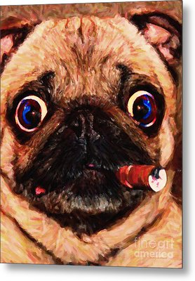 Cigar Puffing Pug - Painterly Metal Print by Wingsdomain Art and Photography