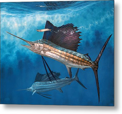 Circling The Bait Metal Print by Don  Ray