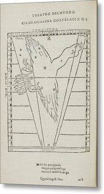 Cisne Star Constellation Metal Print by British Library