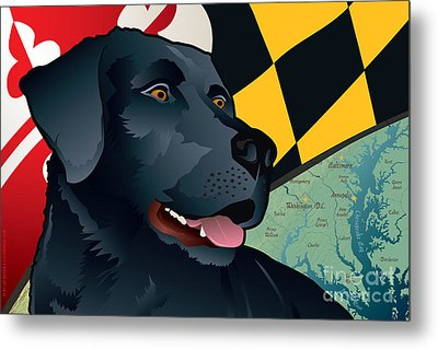 Maryland Black Lab Metal Print by Joe Barsin