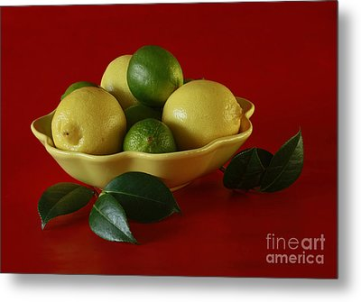 Citrus Passion Metal Print by Inspired Nature Photography Fine Art Photography