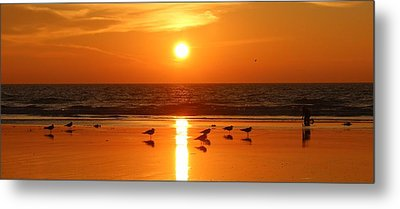 Clam Digging At Sunset - 2 Metal Print by Christy Pooschke