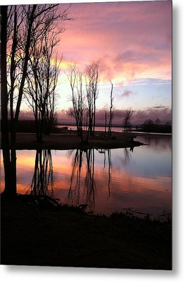 Clearing On The River Metal Print