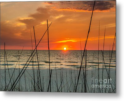 Clearwater Sunset 2 Metal Print by Mike Ste Marie