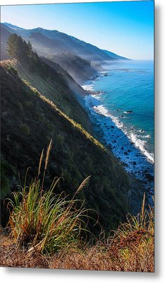 Cliff Grass At Big Sur Metal Print