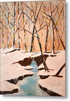 Cliffy Creek Metal Print by Denise Tomasura