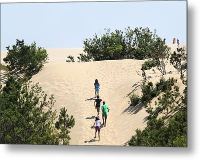 Climbing The Dunes Metal Print by Carolyn Ricks