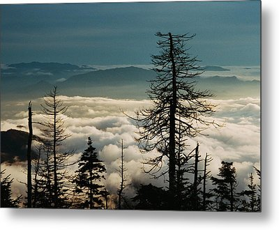 Clingman's Dome Sea Of Clouds - Smoky Mountains Metal Print