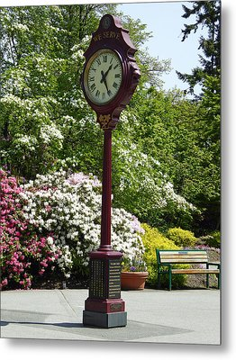 Metal Print featuring the photograph Clock In Park by Laurie Tsemak