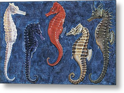 Close-up Of Five Seahorses Side By Side  Metal Print by English School