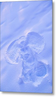Close Up Of Snow Angel At Sunset With Metal Print by Kevin Smith