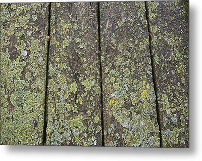 Close Up Of The Wooden Planks Metal Print by Perry Mastrovito