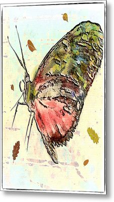 Cloud Butterfly Metal Print by Jill Balsam
