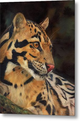Clouded Leopard Metal Print by David Stribbling