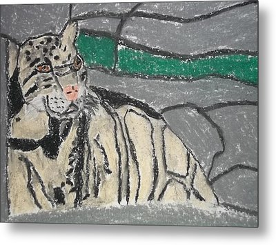 Clouded Leopard Pastel On Paper Metal Print by William Sahir House