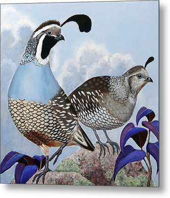 Cloudy California Quail Metal Print