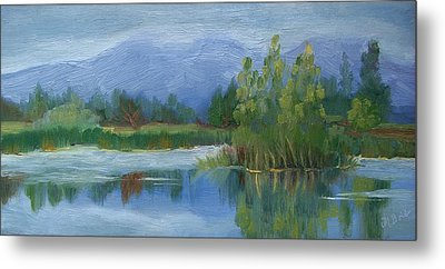 Cloudy Day At Walden Ponds Metal Print