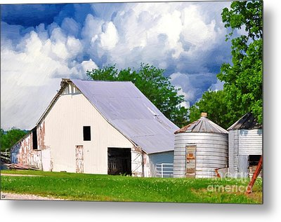 Cloudy Day In The Country Metal Print by Liane Wright