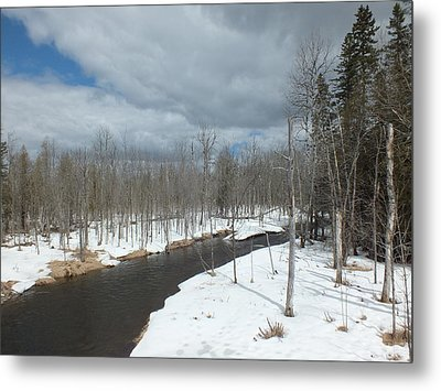 Metal Print featuring the photograph Cloudy Spring Day by Gene Cyr