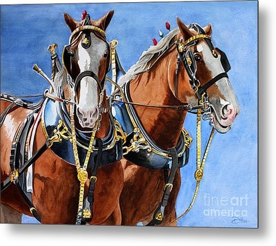 Clydesdale Duo Metal Print by Debbie Hart