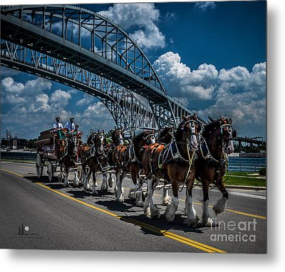 Clydesdales And Blue Water Bridges Metal Print