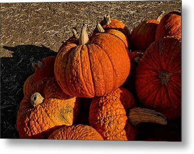 Metal Print featuring the photograph Knarly Pumpkin by Michael Gordon