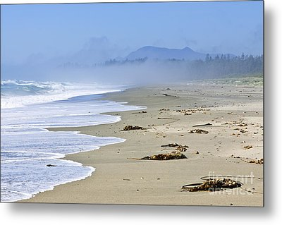 Coast Of Pacific Ocean In Canada Metal Print by Elena Elisseeva