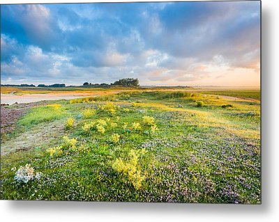 Coast Sunrise Metal Print