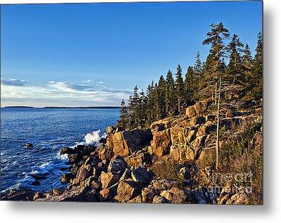 Coastal Maine Landscape. Metal Print by John Greim