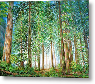 Coastal Redwoods Metal Print by Jane Girardot