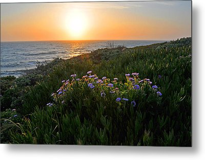 Coastal Sunset Metal Print by Lynn Bauer