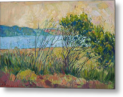 Coastal View Metal Print by Erin Hanson