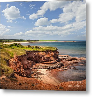 Coastline At East Point  Metal Print by Elena Elisseeva