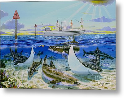 Cobia Run In004 Metal Print by Carey Chen