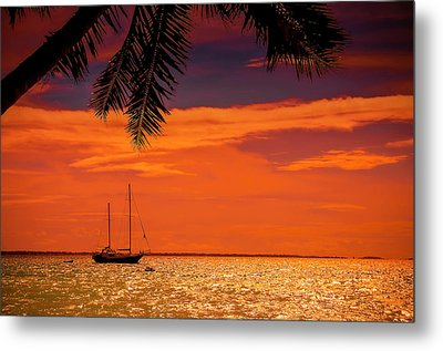 Cocktail Tropical Dream Metal Print by Jenny Rainbow