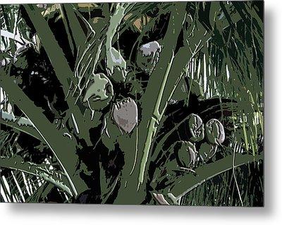 Coconut Palms Metal Print by Karen Nicholson