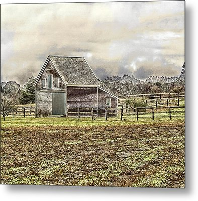 Metal Print featuring the photograph Cold Day by Constantine Gregory