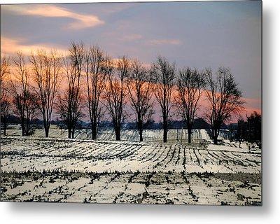 Cold Morning Treeline Metal Print by Kimberleigh Ladd