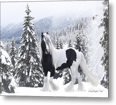 Cold Mountain Metal Print by Terry Kirkland Cook