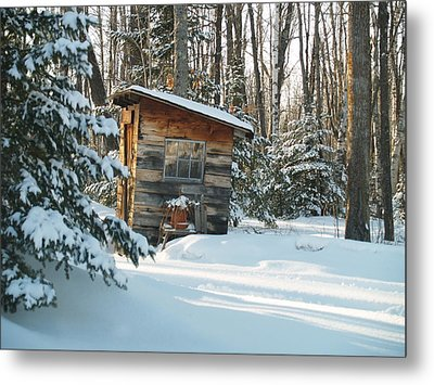 Cold Outlook Metal Print by Susan Crossman Buscho
