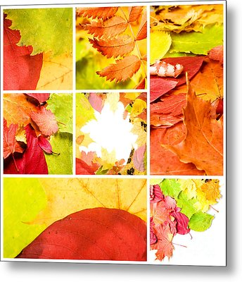 Collage Colorful Metal Print by Boon Mee