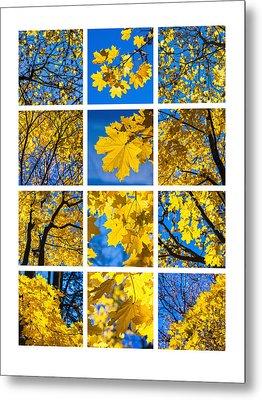 Collage October Blues Metal Print by Alexander Senin