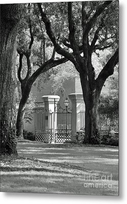 College Of Charleston Gate Metal Print