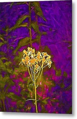 Color 5 Metal Print by Pamela Cooper