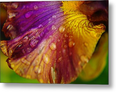Color And Droplets Metal Print by Jeff Swan