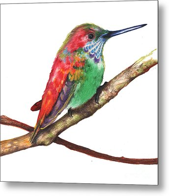 Color Bird 9 Metal Print by Anthony Burks Sr