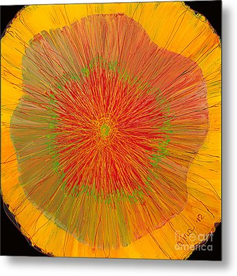 Color Burst 4 Metal Print
