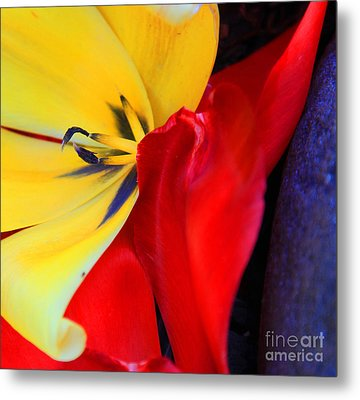 Color Kiss Metal Print by Jeanette French